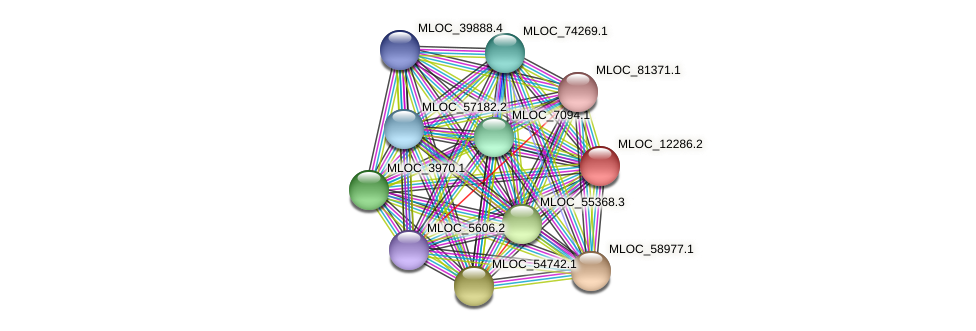 MLOC_12286.2 protein (Hordeum vulgare) - STRING interaction network