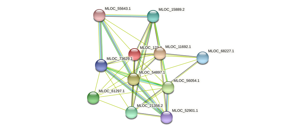 MLOC_123.2 protein (Hordeum vulgare) - STRING interaction network
