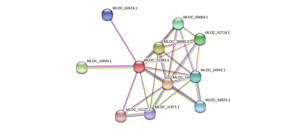 MLOC_12393.4 protein (Hordeum vulgare) - STRING interaction network