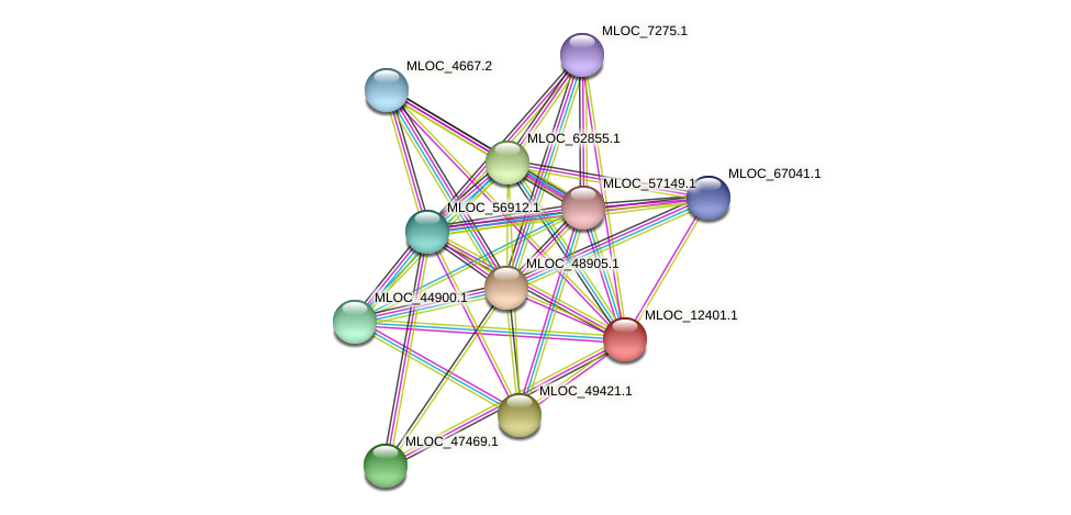 MLOC_12401.1 protein (Hordeum vulgare) - STRING interaction network