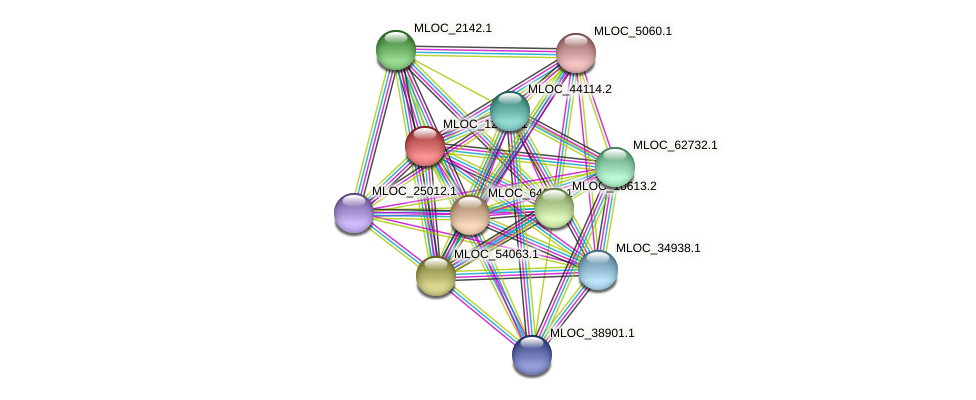 MLOC_12402.1 protein (Hordeum vulgare) - STRING interaction network