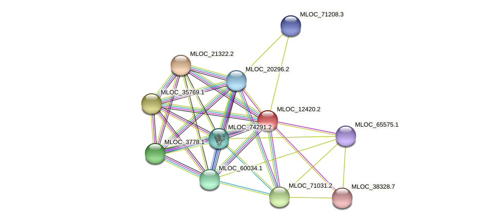 MLOC_12420.2 protein (Hordeum vulgare) - STRING interaction network