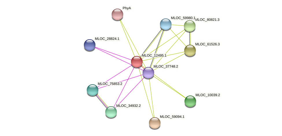 MLOC_12495.1 protein (Hordeum vulgare) - STRING interaction network
