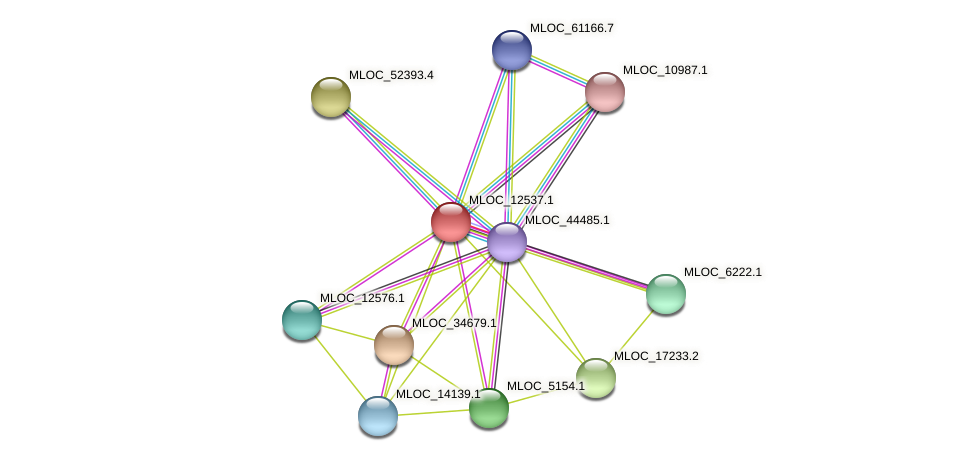 MLOC_12537.1 protein (Hordeum vulgare) - STRING interaction network