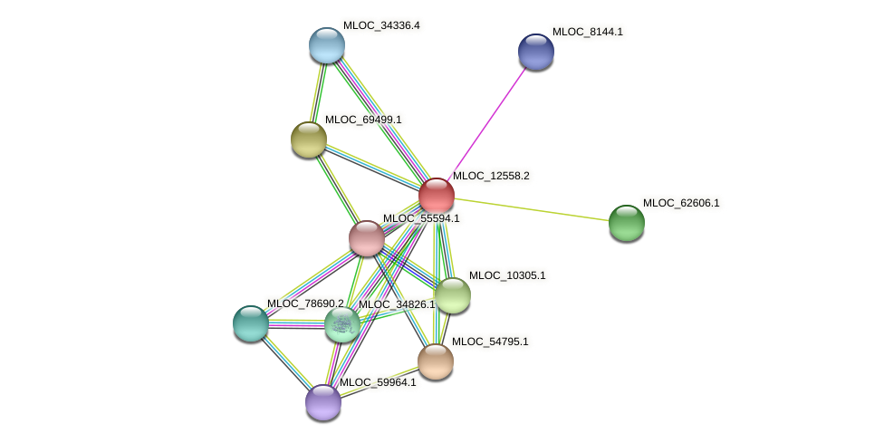 MLOC_12558.1 protein (Hordeum vulgare) - STRING interaction network