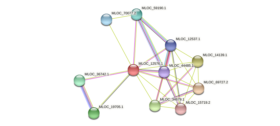 MLOC_12576.1 protein (Hordeum vulgare) - STRING interaction network