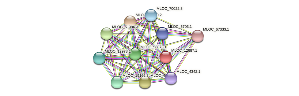 MLOC_12687.1 protein (Hordeum vulgare) - STRING interaction network