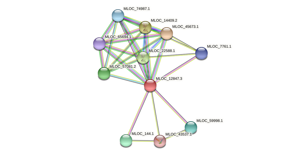 MLOC_12847.3 protein (Hordeum vulgare) - STRING interaction network