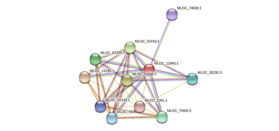 MLOC_12940.1 protein (Hordeum vulgare) - STRING interaction network