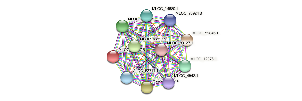 MLOC_12967.5 protein (Hordeum vulgare) - STRING interaction network