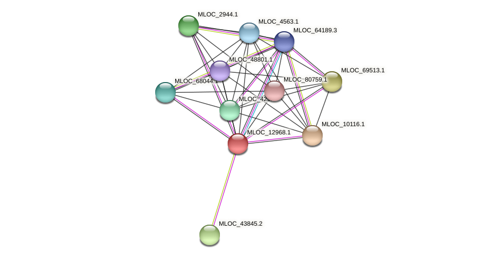 MLOC_12968.1 protein (Hordeum vulgare) - STRING interaction network