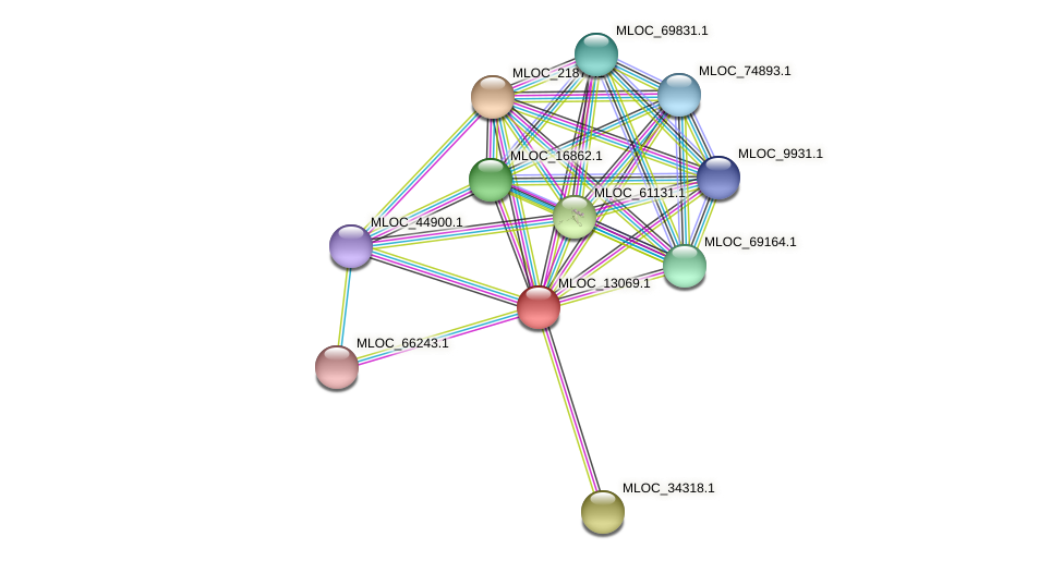 MLOC_13069.1 protein (Hordeum vulgare) - STRING interaction network