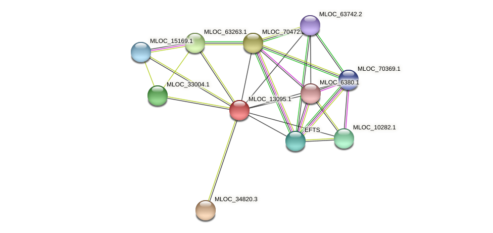 MLOC_13095.1 protein (Hordeum vulgare) - STRING interaction network