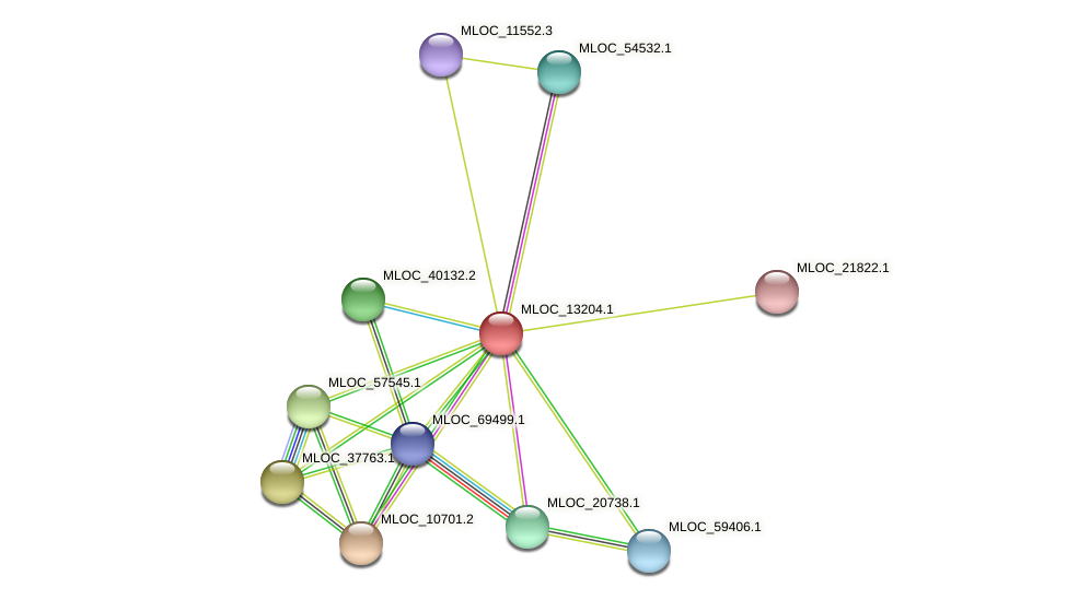 MLOC_13204.1 protein (Hordeum vulgare) - STRING interaction network
