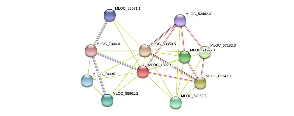 MLOC_13229.1 protein (Hordeum vulgare) - STRING interaction network