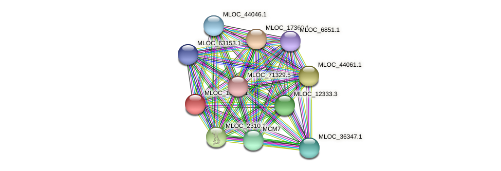 MLOC_13243.1 protein (Hordeum vulgare) - STRING interaction network