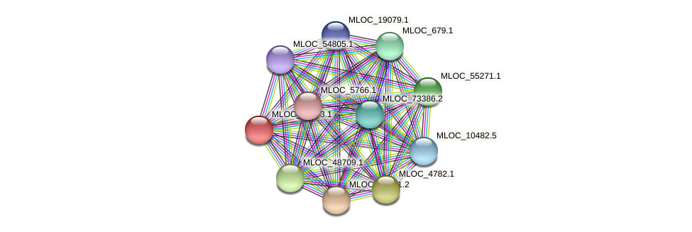MLOC_13273.1 protein (Hordeum vulgare) - STRING interaction network