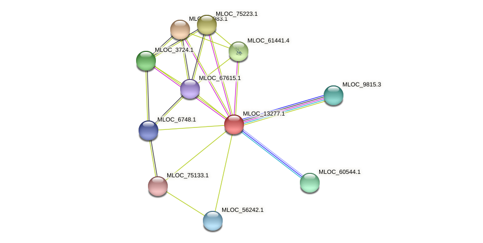 MLOC_13277.1 protein (Hordeum vulgare) - STRING interaction network