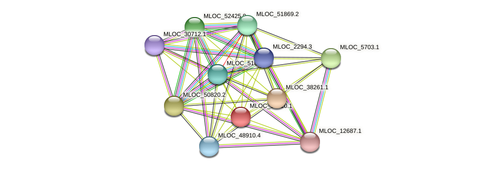 MLOC_13310.1 protein (Hordeum vulgare) - STRING interaction network