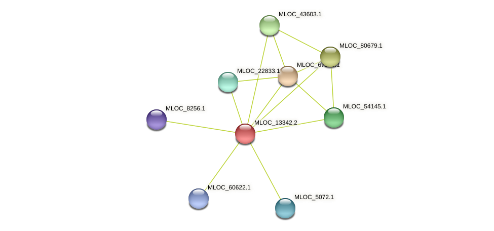 MLOC_13342.2 protein (Hordeum vulgare) - STRING interaction network