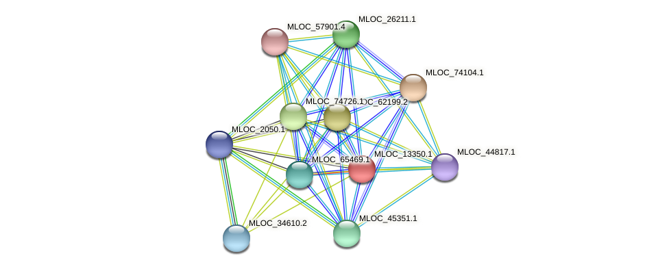 MLOC_13350.1 protein (Hordeum vulgare) - STRING interaction network