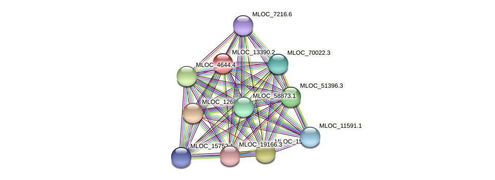 MLOC_13390.2 protein (Hordeum vulgare) - STRING interaction network