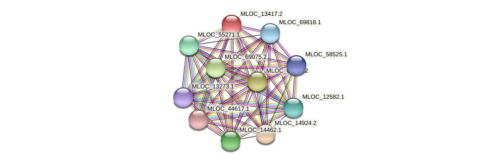 MLOC_13417.2 protein (Hordeum vulgare) - STRING interaction network