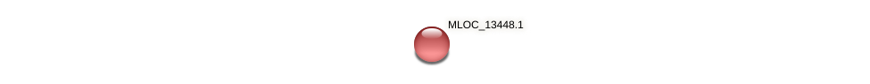 MLOC_13448.1 protein (Hordeum vulgare) - STRING interaction network