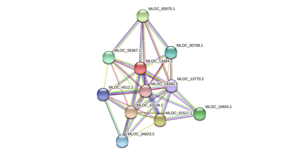 MLOC_13484.2 protein (Hordeum vulgare) - STRING interaction network