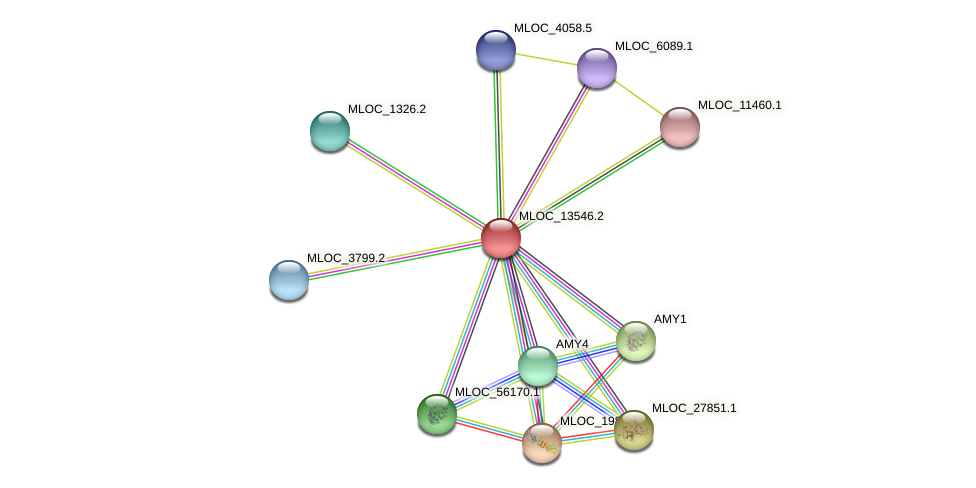MLOC_13546.2 protein (Hordeum vulgare) - STRING interaction network