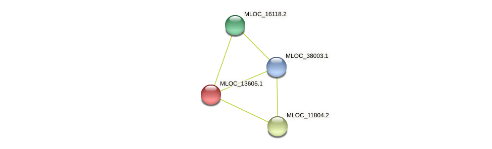 MLOC_13605.1 protein (Hordeum vulgare) - STRING interaction network