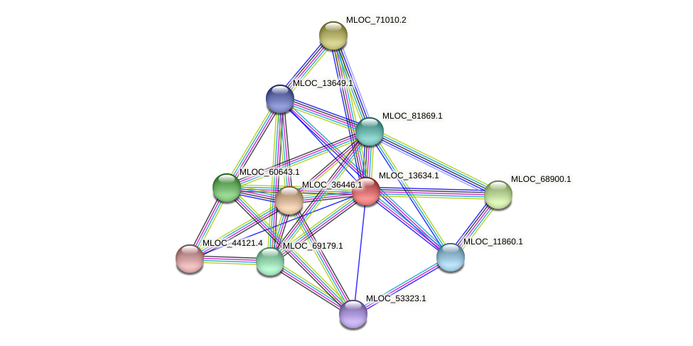 MLOC_13634.1 protein (Hordeum vulgare) - STRING interaction network
