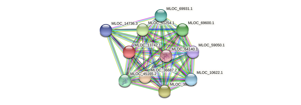 MLOC_13742.1 protein (Hordeum vulgare) - STRING interaction network