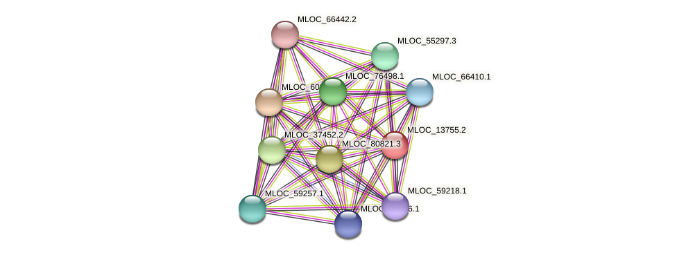 MLOC_13755.2 protein (Hordeum vulgare) - STRING interaction network
