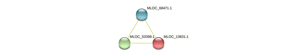 MLOC_13831.1 protein (Hordeum vulgare) - STRING interaction network
