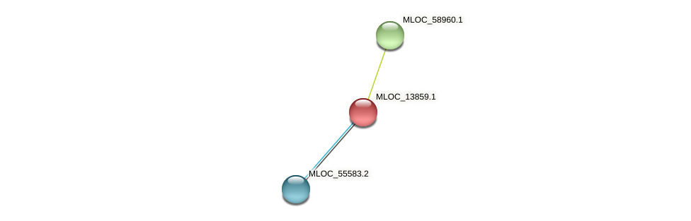 MLOC_13859.1 protein (Hordeum vulgare) - STRING interaction network