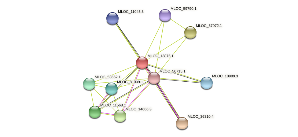 MLOC_13875.1 protein (Hordeum vulgare) - STRING interaction network