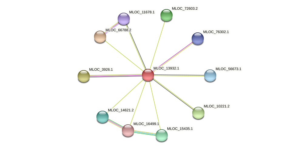 MLOC_13932.1 protein (Hordeum vulgare) - STRING interaction network