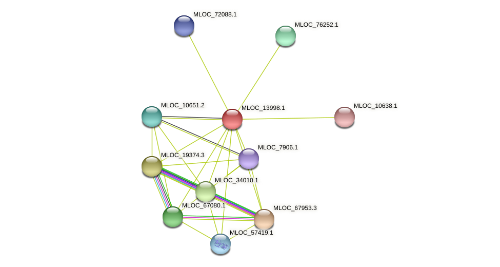 MLOC_13998.1 protein (Hordeum vulgare) - STRING interaction network