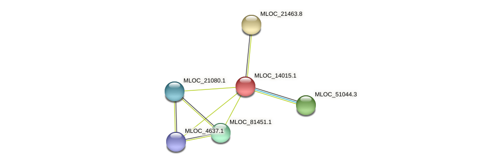 MLOC_14015.1 protein (Hordeum vulgare) - STRING interaction network