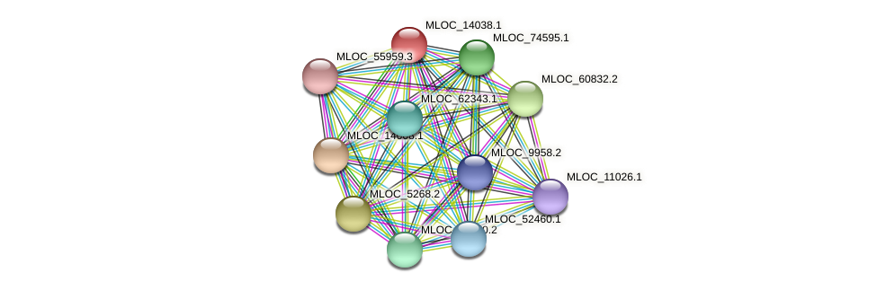 MLOC_14038.1 protein (Hordeum vulgare) - STRING interaction network