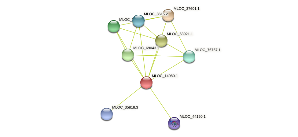 MLOC_14080.1 protein (Hordeum vulgare) - STRING interaction network