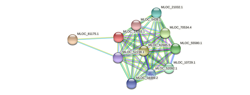 MLOC_14093.1 protein (Hordeum vulgare) - STRING interaction network