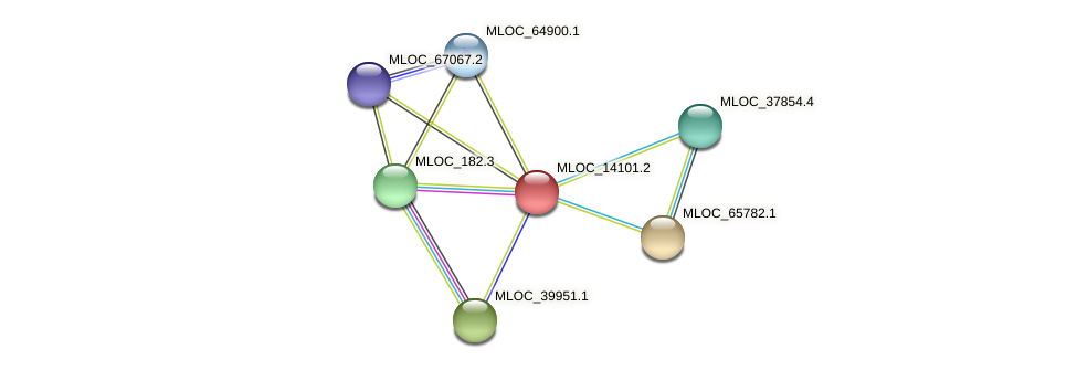 MLOC_14101.2 protein (Hordeum vulgare) - STRING interaction network