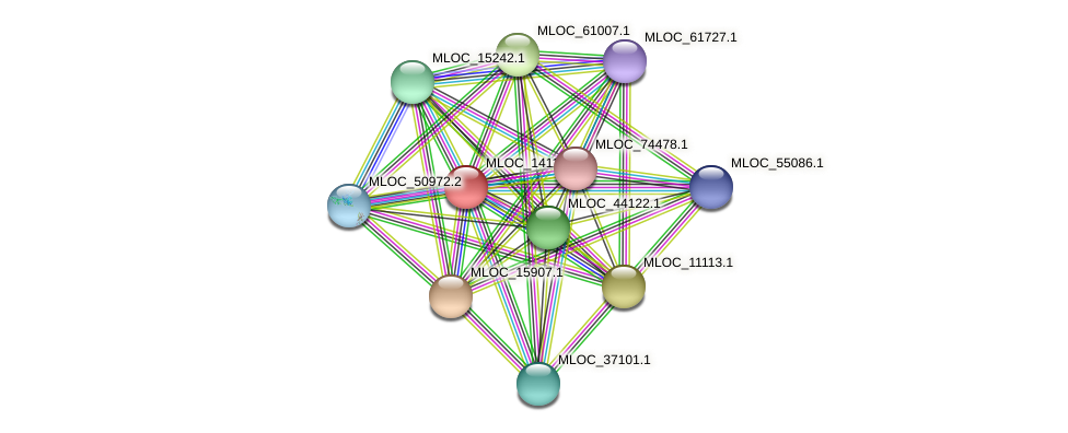 MLOC_1411.2 protein (Hordeum vulgare) - STRING interaction network