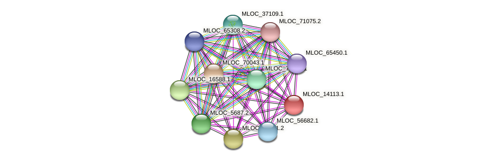 MLOC_14113.1 protein (Hordeum vulgare) - STRING interaction network