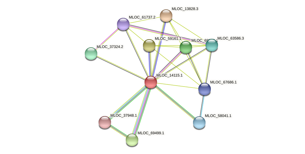 MLOC_14115.1 protein (Hordeum vulgare) - STRING interaction network