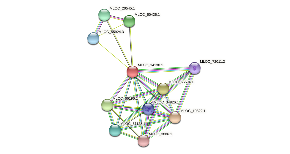 MLOC_14130.1 protein (Hordeum vulgare) - STRING interaction network