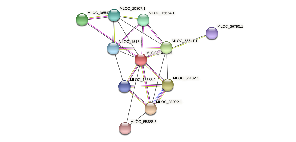 MLOC_14147.1 protein (Hordeum vulgare) - STRING interaction network
