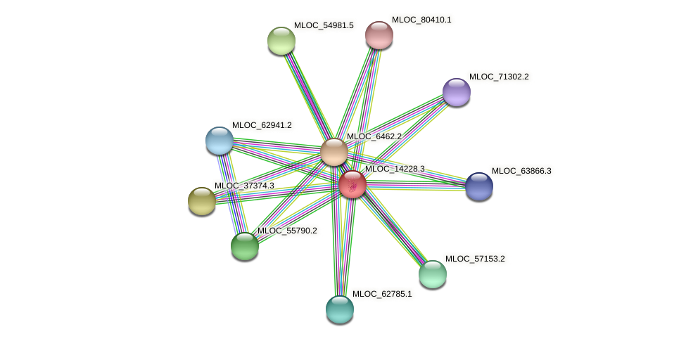 MLOC_14228.3 protein (Hordeum vulgare) - STRING interaction network